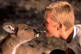 Australien Show von Michael Fleck