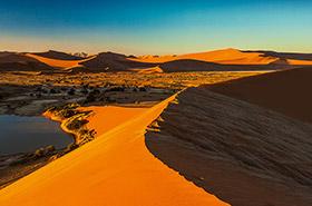 Namibia Show